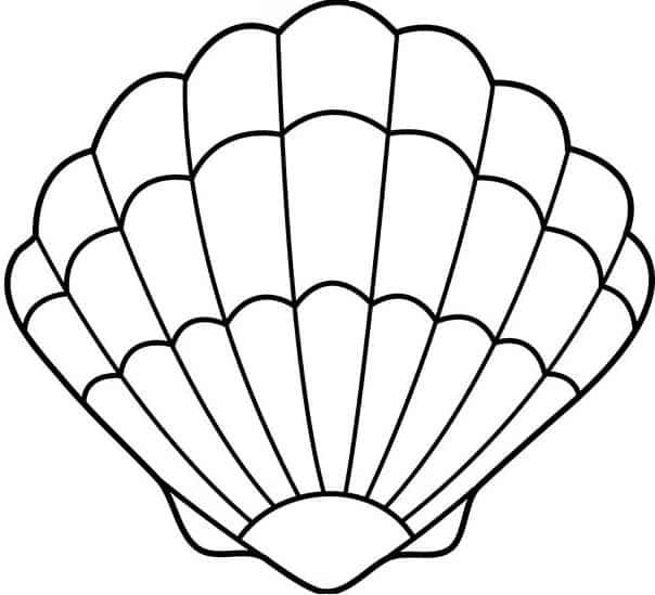 patrón del cojín de ostra